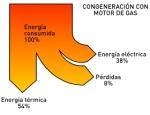 Cogeneración con motor